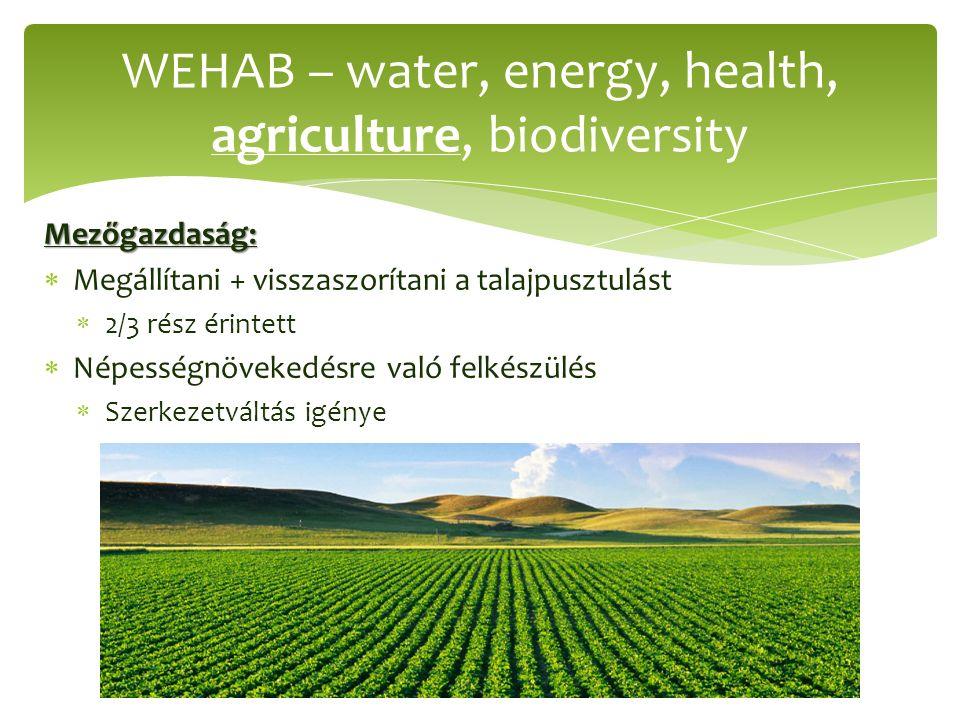Mezőgazdaság:  Megállítani + visszaszorítani a talajpusztulást  2/3 rész érintett  Népességnövekedésre való felkészülés  Szerkezetváltás igénye WEHAB – water, energy, health, agriculture, biodiversity