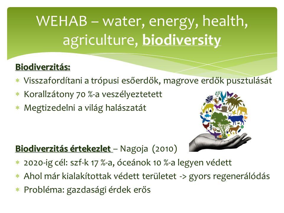 Biodiverzitás:  Visszafordítani a trópusi esőerdők, magrove erdők pusztulását  Korallzátony 70 %-a veszélyeztetett  Megtizedelni a világ halászatát Biodiverzitás értekezlet Biodiverzitás értekezlet – Nagoja (2010)  2020-ig cél: szf-k 17 %-a, óceánok 10 %-a legyen védett  Ahol már kialakítottak védett területet -> gyors regenerálódás  Probléma: gazdasági érdek erős WEHAB – water, energy, health, agriculture, biodiversity