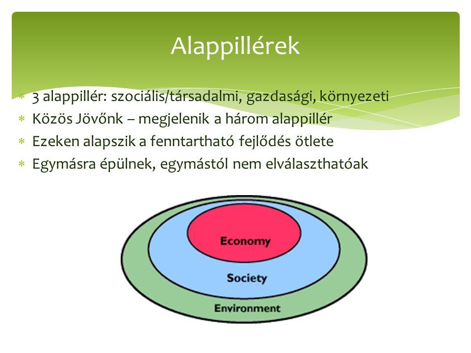  3 alappillér: szociális/társadalmi, gazdasági, környezeti  Közös Jövőnk – megjelenik a három alappillér  Ezeken alapszik a fenntartható fejlődés ötlete  Egymásra épülnek, egymástól nem elválaszthatóak Alappillérek