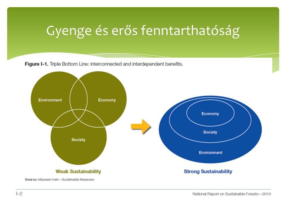  3 pillér közti kapcsolat -> halmazok metszéspontja  Természeti tőke helyettesíthető gazdasági tőkével  Természet nélküli világ – természeti erőforrások szintetikus úton  DE.