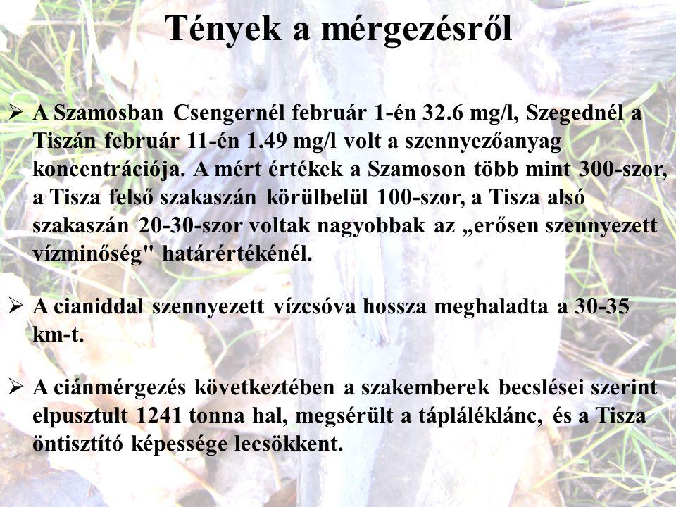 Tények a mérgezésről  A Szamosban Csengernél február 1-én 32.6 mg/l, Szegednél a Tiszán február 11-én 1.49 mg/l volt a szennyezőanyag koncentrációja.