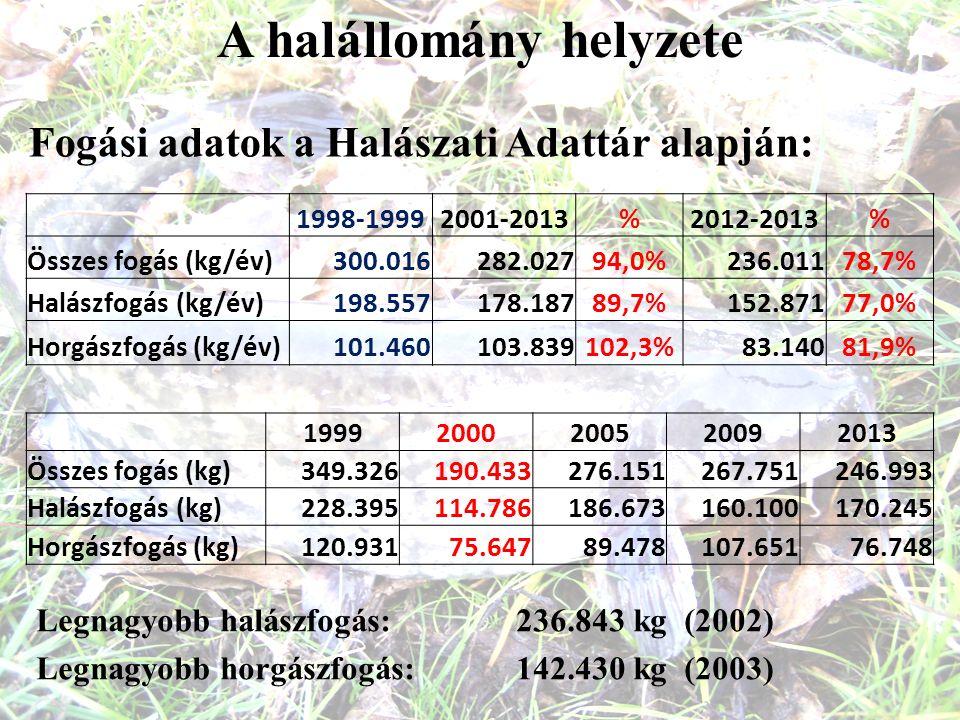 A halállomány helyzete Fogási adatok a Halászati Adattár alapján: 1998-19992001-2013%2012-2013% Összes fogás (kg/év)300.016282.02794,0%236.01178,7% Halászfogás (kg/év)198.557178.18789,7%152.87177,0% Horgászfogás (kg/év)101.460103.839102,3%83.14081,9% 19992000200520092013 Összes fogás (kg)349.326190.433276.151267.751246.993 Halászfogás (kg)228.395114.786186.673160.100170.245 Horgászfogás (kg)120.93175.64789.478107.65176.748 Legnagyobb halászfogás: 236.843 kg (2002) Legnagyobb horgászfogás: 142.430 kg (2003)