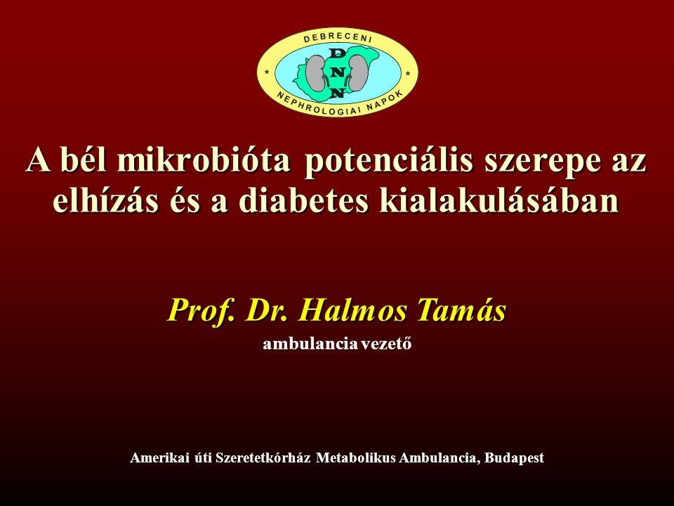 Magas zsírtartalmú étrend Bélflóra megváltozása Bélfal fokozott permeabilitása Fokozott LPS abszorpció Metabolikus endotoxémia gyulladás Metabolikus és mentális betegségek: T2DM - AD A bélflóra szerepe a metabolikus betegségek és az AD kialakulásában diszbakteriosis esetén inzulinrezisztencia Halmos T, Suba I, O.H.