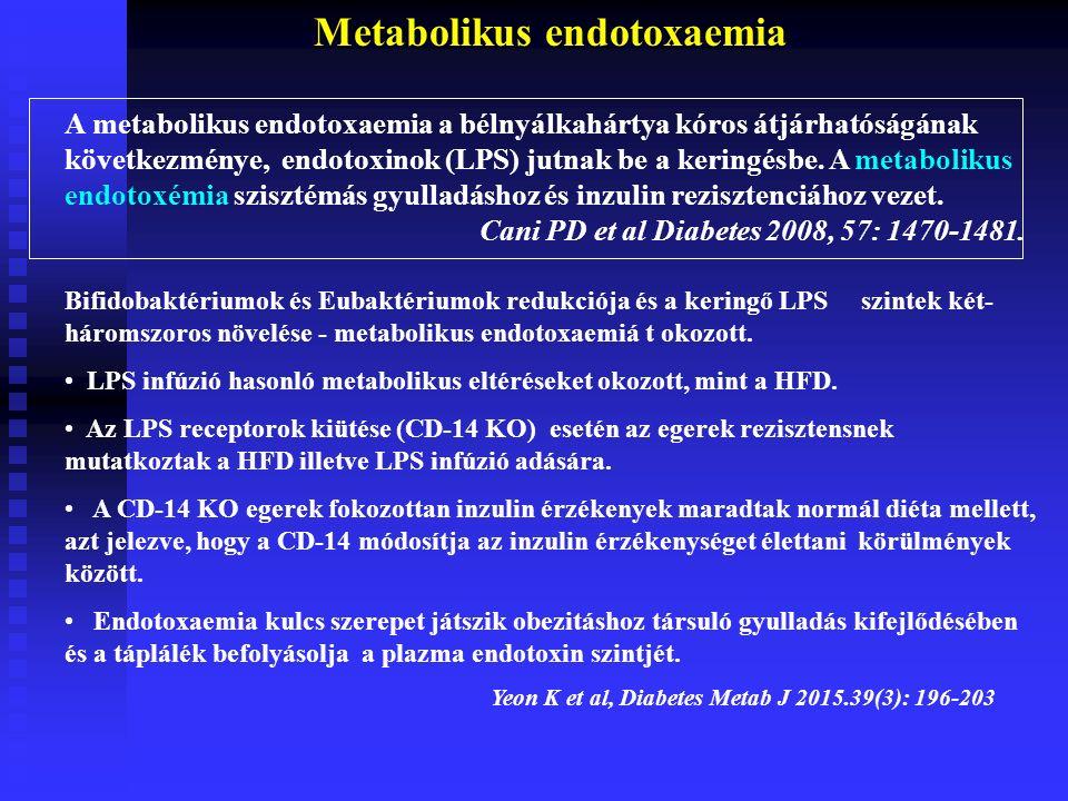 Metabolikus endotoxaemia A metabolikus endotoxaemia a bélnyálkahártya kóros átjárhatóságának következménye, endotoxinok (LPS) jutnak be a keringésbe.