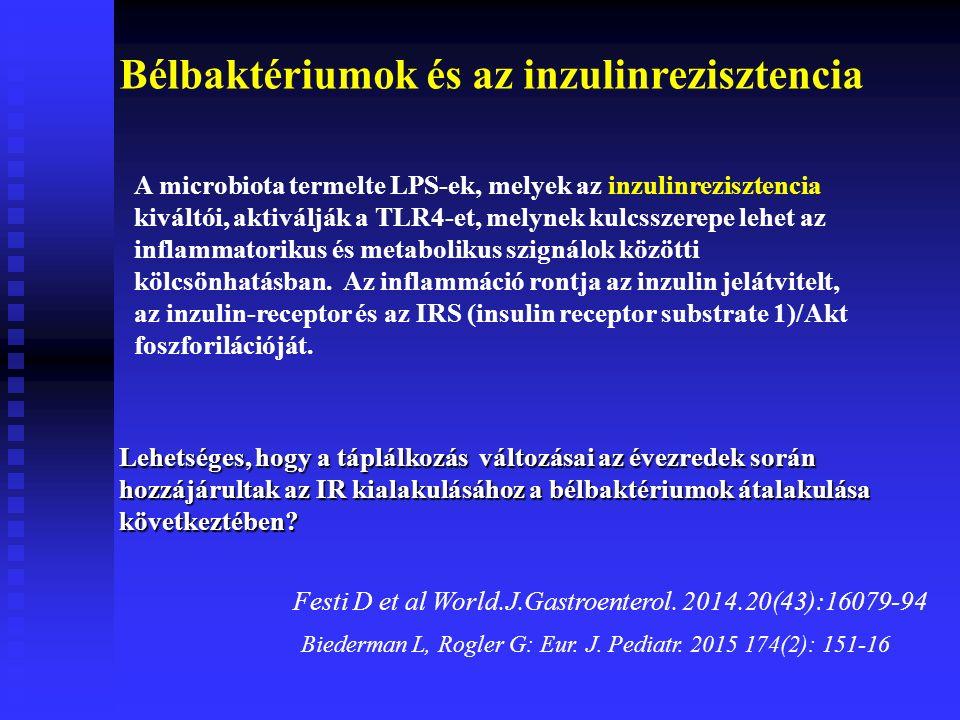Bélbaktériumok és az inzulinrezisztencia Festi D et al World.J.Gastroenterol.