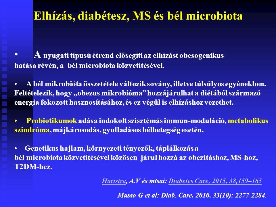 A nyugati típusú étrend elősegíti az elhízást obesogenikus hatása révén, a bél microbiota közvetítésével.