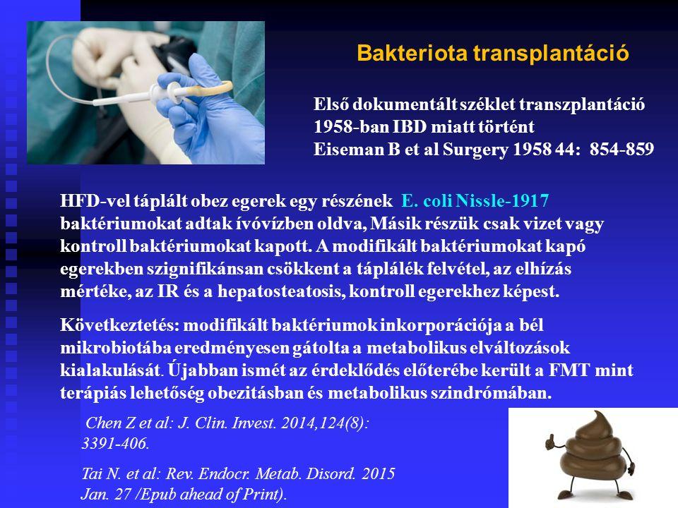 HFD-vel táplált obez egerek egy részének E.