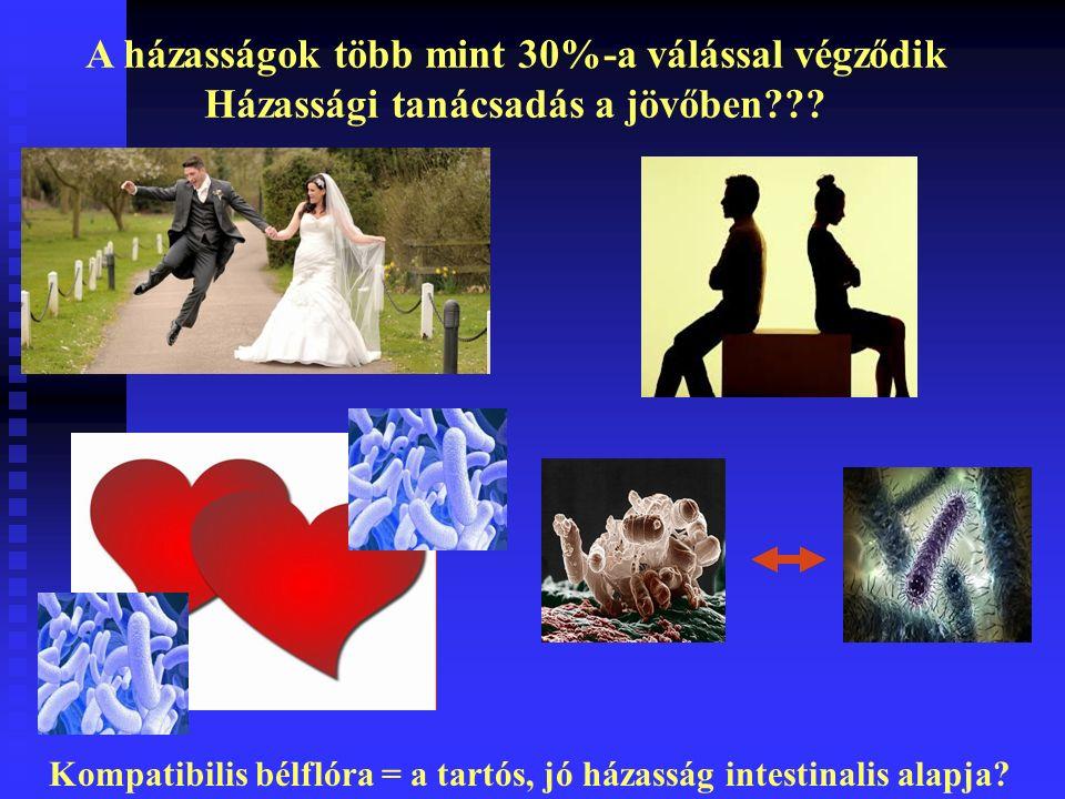 A házasságok több mint 30%-a válással végződik Házassági tanácsadás a jövőben .