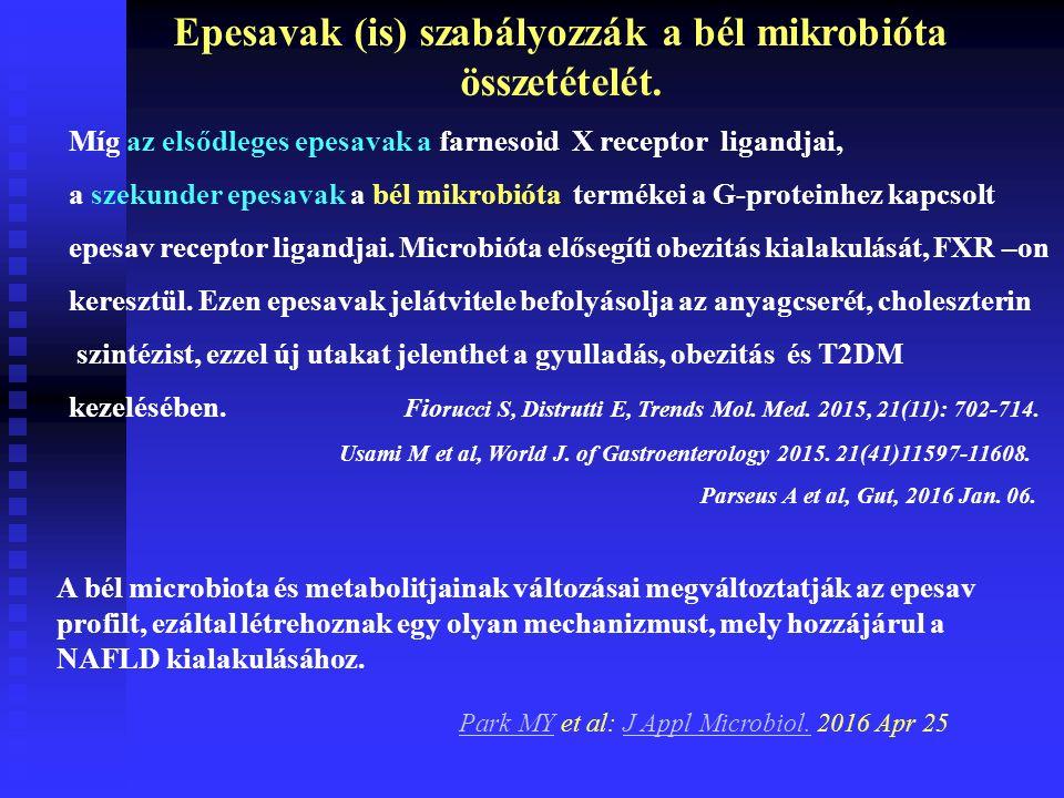 Epesavak (is) szabályozzák a bél mikrobióta összetételét.