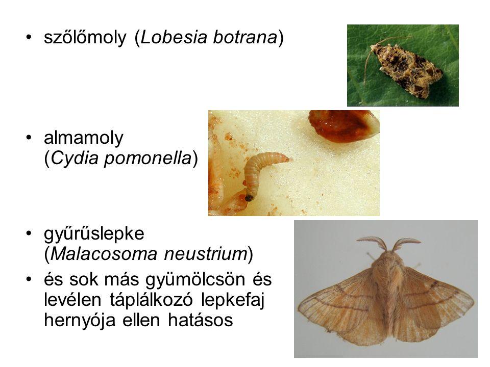 szőlőmoly (Lobesia botrana) almamoly (Cydia pomonella) gyűrűslepke (Malacosoma neustrium) és sok más gyümölcsön és levélen táplálkozó lepkefaj hernyója ellen hatásos