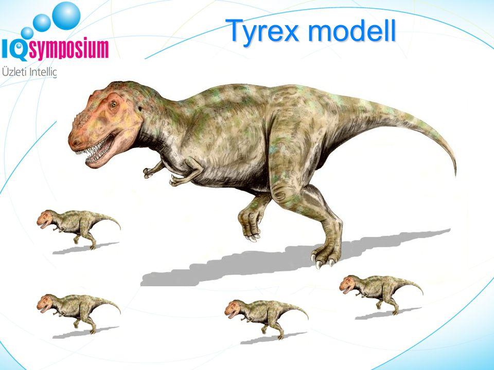 Kockázatkezelés Szolgáltató (Bank/Telekom) Tyrex modell
