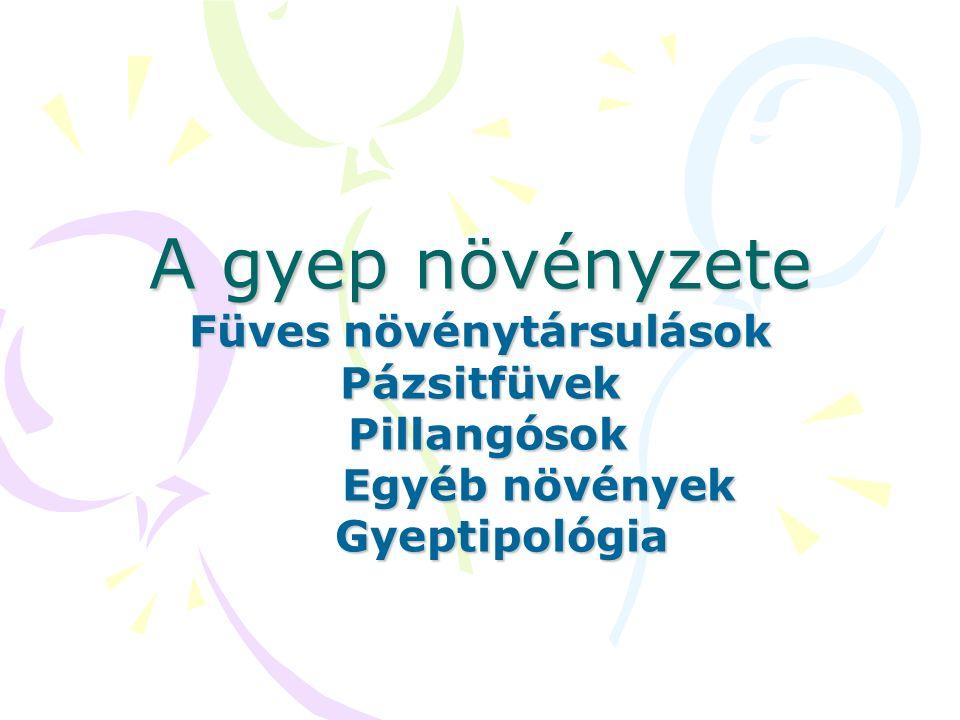 A gyep növényzete Füves növénytársulások Pázsitfüvek Pillangósok Egyéb növények Gyeptipológia