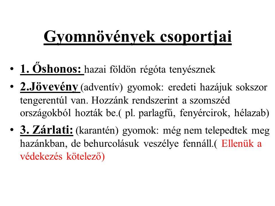Gyomnövények csoportjai 1.