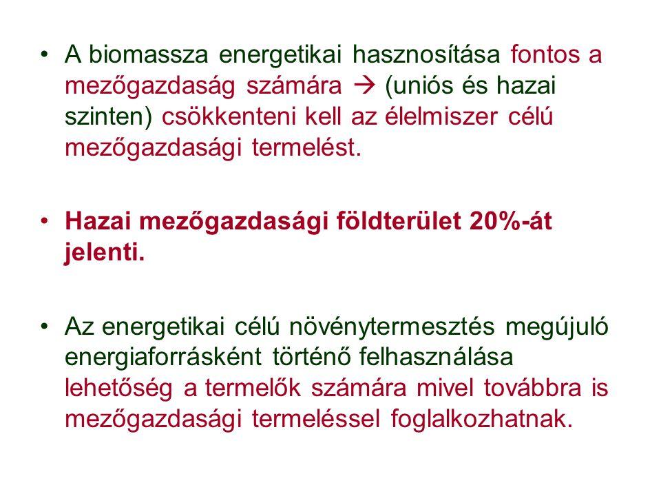 A biomassza energetikai hasznosítása fontos a mezőgazdaság számára  (uniós és hazai szinten) csökkenteni kell az élelmiszer célú mezőgazdasági termelést.