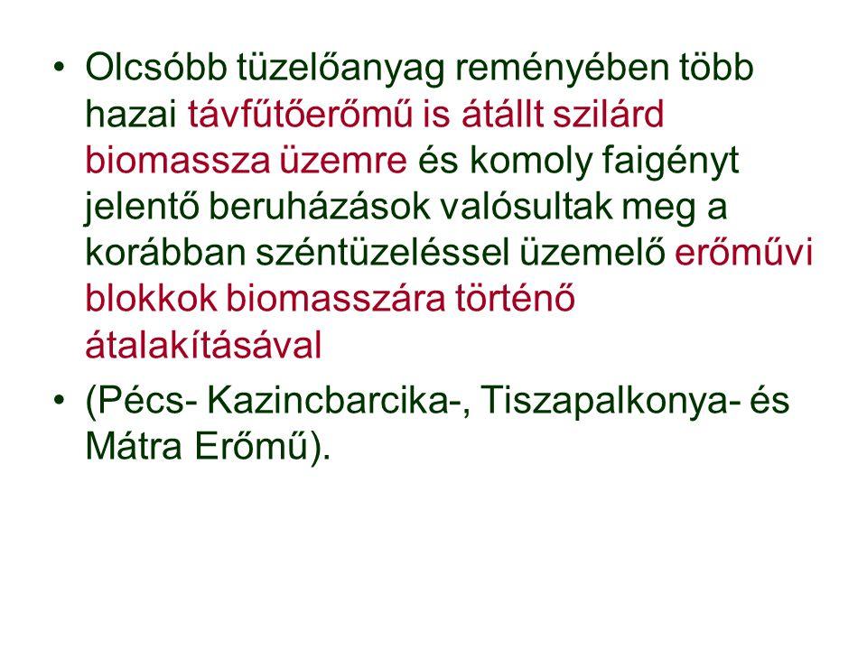 Olcsóbb tüzelőanyag reményében több hazai távfűtőerőmű is átállt szilárd biomassza üzemre és komoly faigényt jelentő beruházások valósultak meg a korábban széntüzeléssel üzemelő erőművi blokkok biomasszára történő átalakításával (Pécs- Kazincbarcika-, Tiszapalkonya- és Mátra Erőmű).