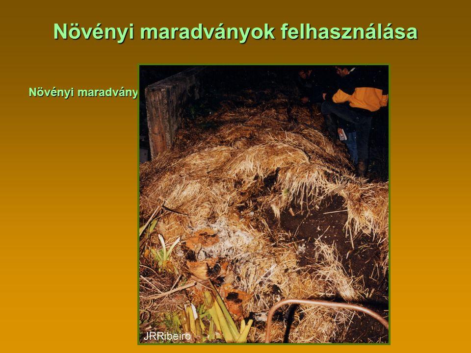 Növényi maradványok felhasználása Növényi maradványok