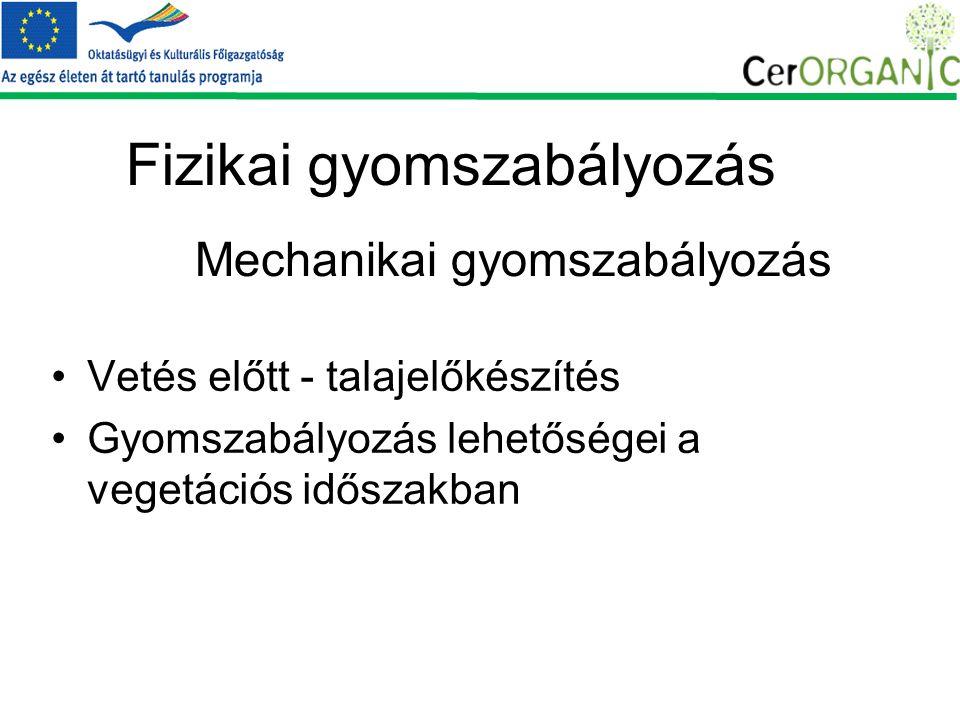 Fizikai gyomszabályozás Vetés előtt - talajelőkészítés Gyomszabályozás lehetőségei a vegetációs időszakban Mechanikai gyomszabályozás