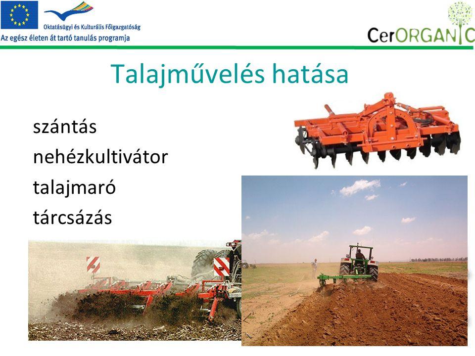 Talajművelés hatása szántás nehézkultivátor talajmaró tárcsázás csökkentett talajművelés