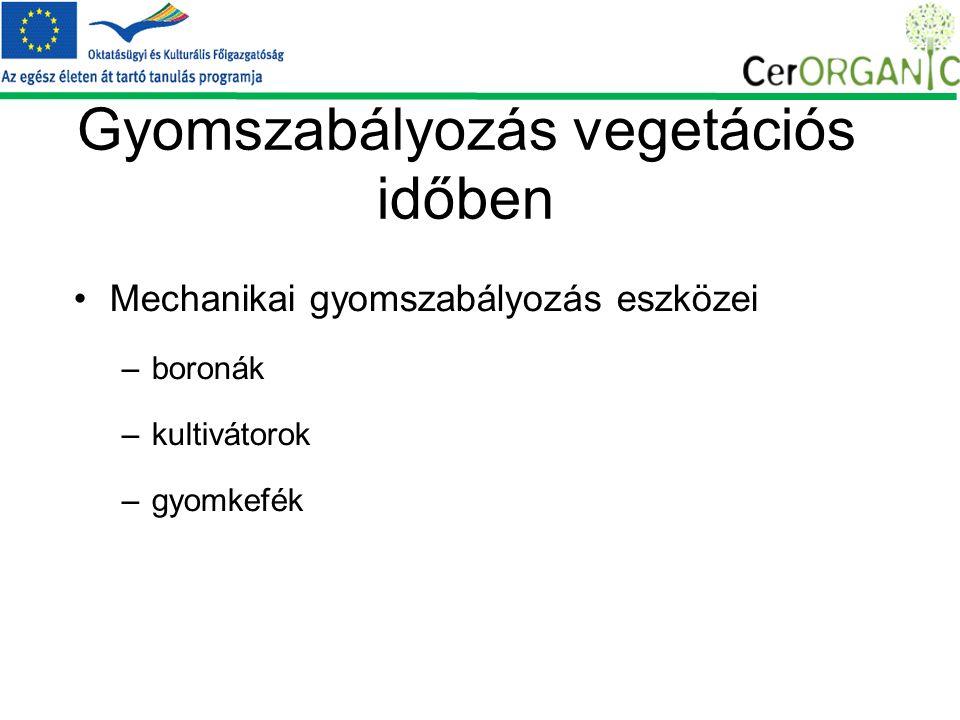 Gyomszabályozás vegetációs időben Mechanikai gyomszabályozás eszközei –boronák –kultivátorok –gyomkefék