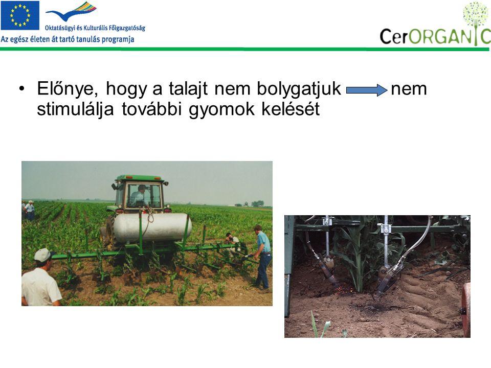 Előnye, hogy a talajt nem bolygatjuk nem stimulálja további gyomok kelését