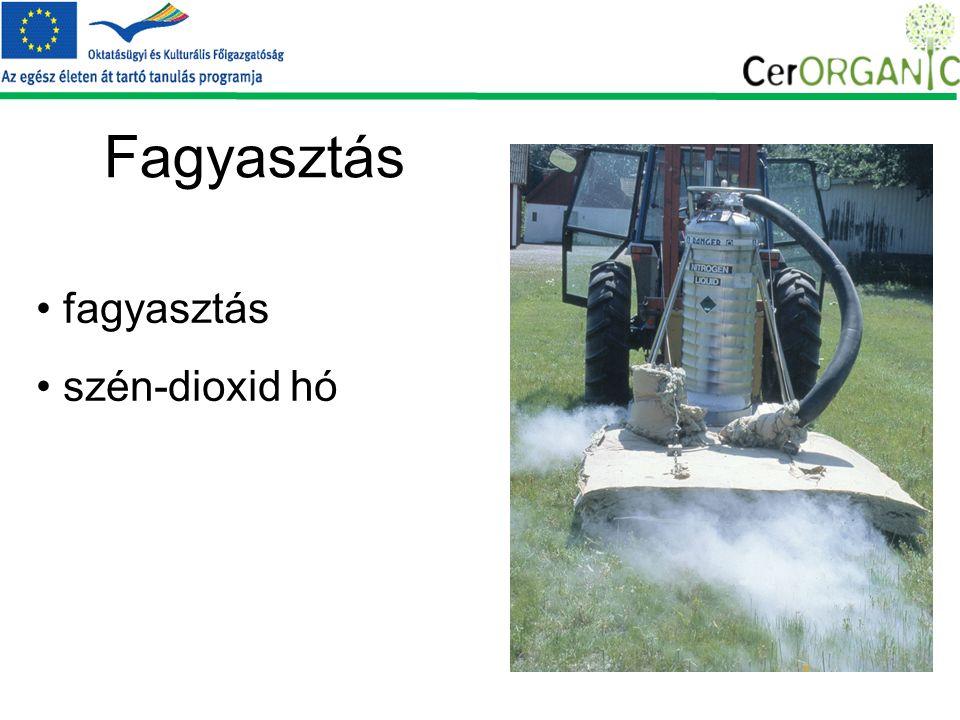 Fagyasztás fagyasztás szén-dioxid hó