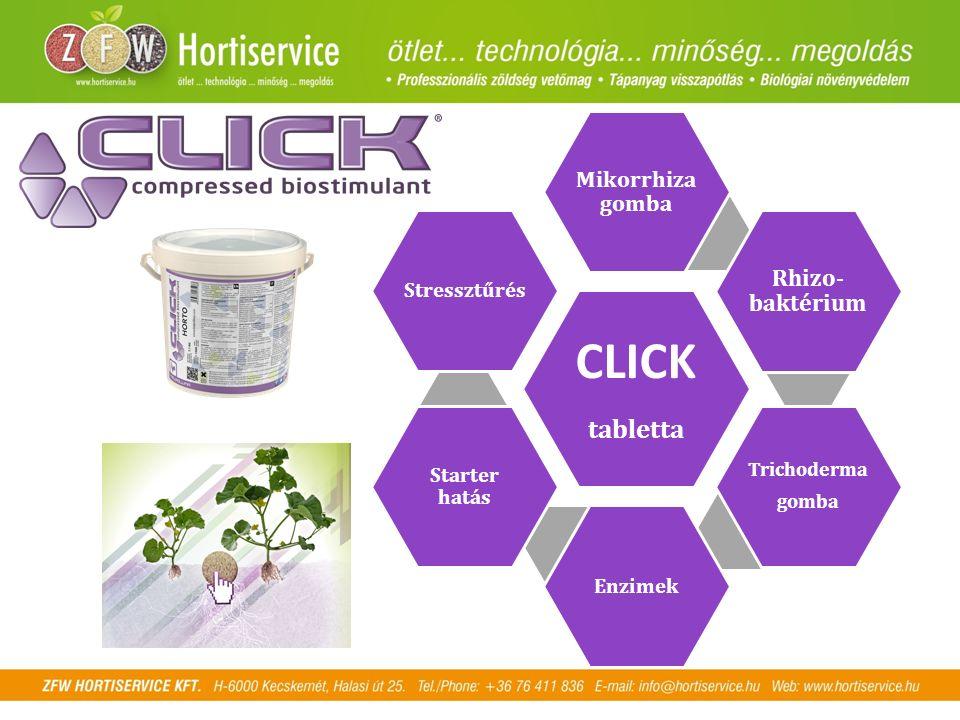 CLICK tabletta Mikorrhiza gomba Rhizo- baktérium Trichoderma gomba Enzimek Starter hatás Stressztűrés