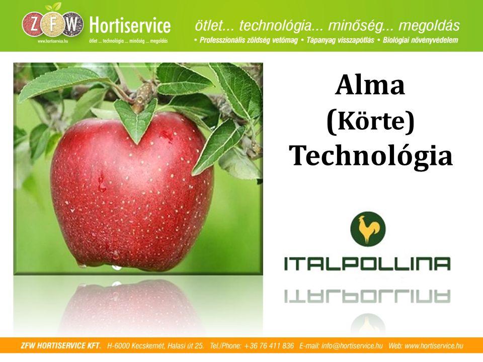 Alma ( Körte) Technológia