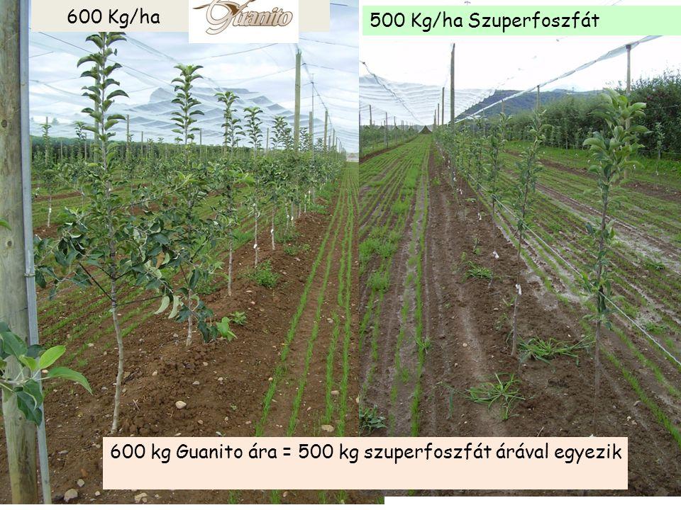 600 Kg/ha 500 Kg/ha Szuperfoszfát 600 kg Guanito ára = 500 kg szuperfoszfát árával egyezik