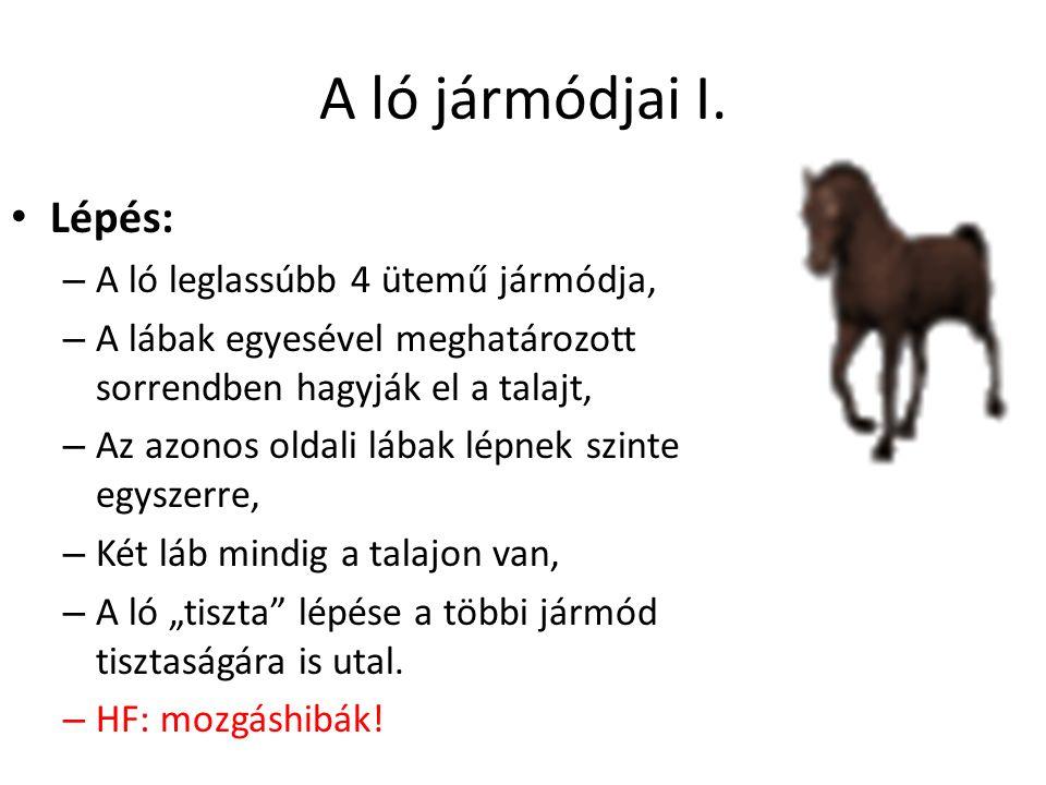 A ló jármódjai I. Lépés: – A ló leglassúbb 4 ütemű jármódja, – A lábak egyesével meghatározott sorrendben hagyják el a talajt, – Az azonos oldali lába