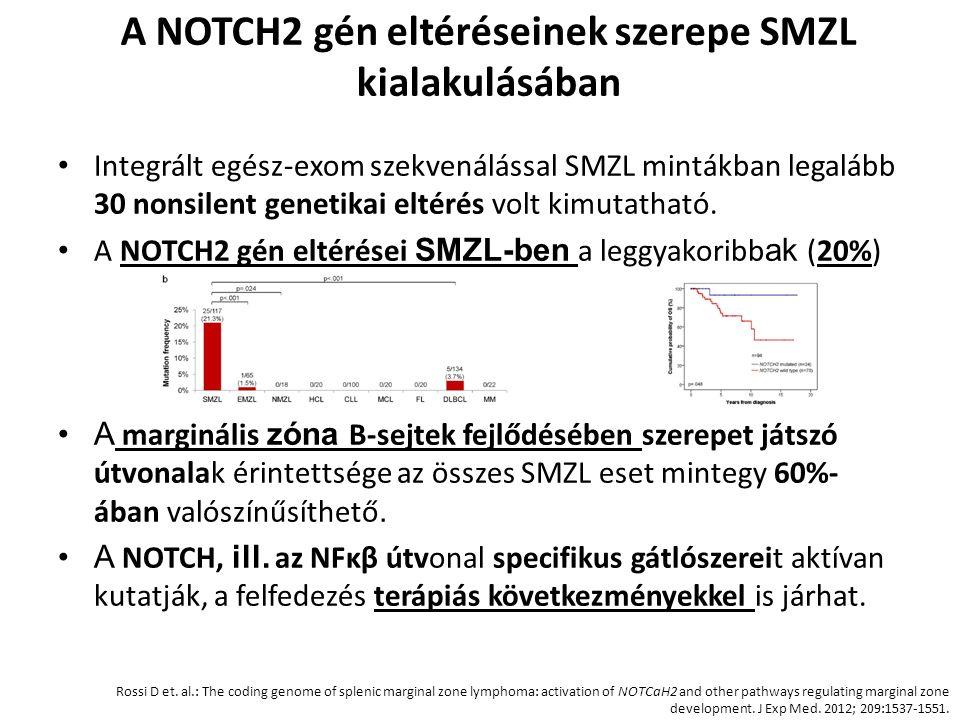 A NOTCH2 gén eltéréseinek szerepe SMZL kialakulásában Integrált egész-exom szekvenálással SMZL mintákban legalább 30 nonsilent genetikai eltérés volt