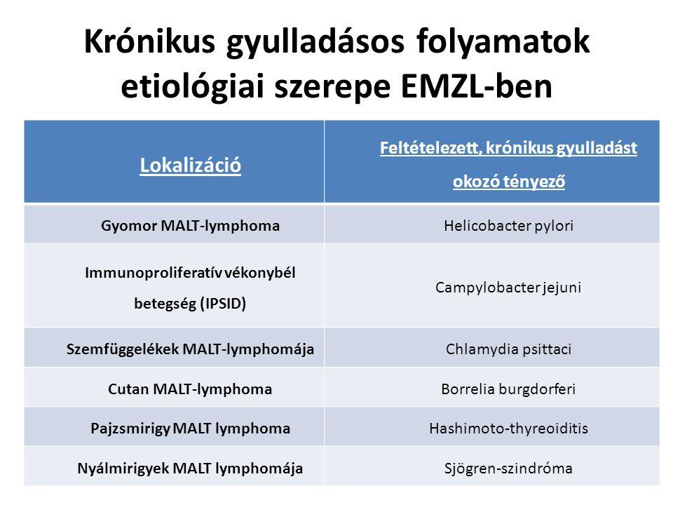 Krónikus gyulladásos folyamatok etiológiai szerepe EMZL-ben Lokalizáció Feltételezett, krónikus gyulladást okozó tényező Gyomor MALT-lymphomaHelicobac