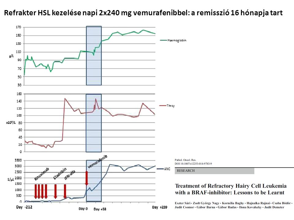 Refrakter HSL kezelése napi 2x240 mg vemurafenibbel: a remisszió 16 hónapja tart