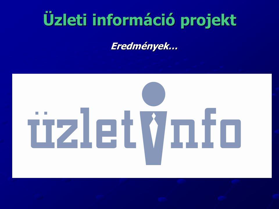Üzleti információ projekt Eredmények…