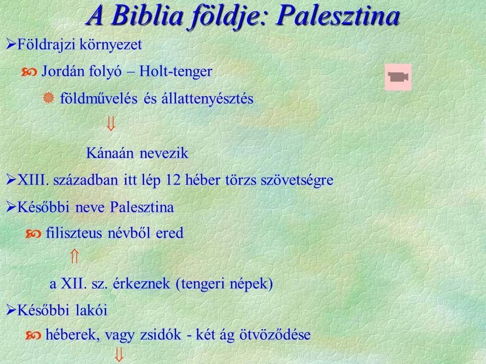  Földrajzi környezet  Jordán folyó – Holt-tenger  földművelés és állattenyésztés  Kánaán nevezik  XIII. században itt lép 12 héber törzs szövetsé