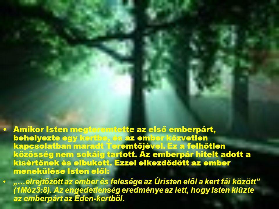 Amikor Isten megteremtette az első emberpárt, behelyezte egy kertbe, és az ember közvetlen kapcsolatban maradt Teremtőjével.