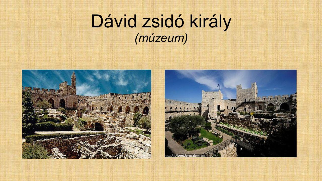 Dávid zsidó király (múzeum)