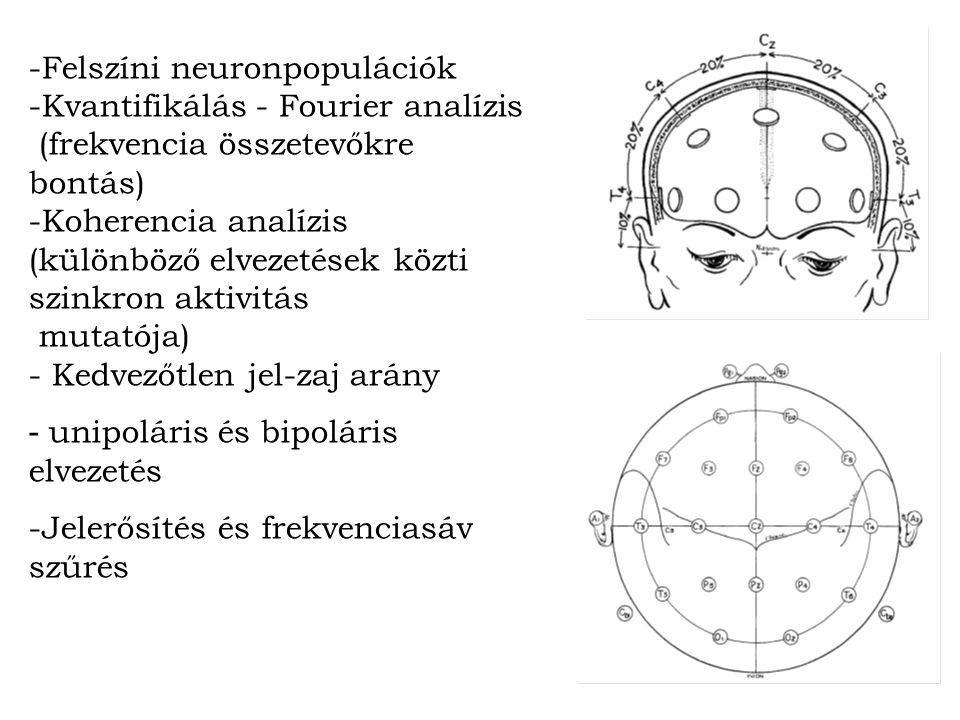 -Felszíni neuronpopulációk -Kvantifikálás - Fourier analízis (frekvencia összetevőkre bontás) -Koherencia analízis (különböző elvezetések közti szinkron aktivitás mutatója) - Kedvezőtlen jel-zaj arány - unipoláris és bipoláris elvezetés -Jelerősítés és frekvenciasáv szűrés