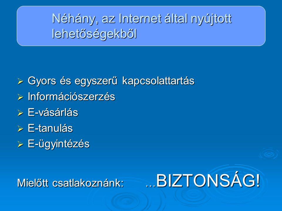 Néhány, az Internet által nyújtott lehetőségekből  Gyors és egyszerű kapcsolattartás  Információszerzés  E-vásárlás  E-tanulás  E-ügyintézés Miel