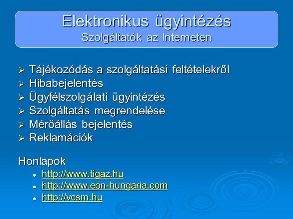 Elektronikus ügyintézés Szolgáltatók az Interneten  Tájékozódás a szolgáltatási feltételekről  Hibabejelentés  Ügyfélszolgálati ügyintézés  Szolgá