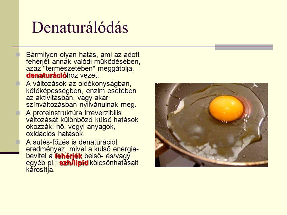 Denaturálódás denaturáció Bármilyen olyan hatás, ami az adott fehérjét annak valódi működésében, azaz természetében meggátolja, denaturációhoz vezet.