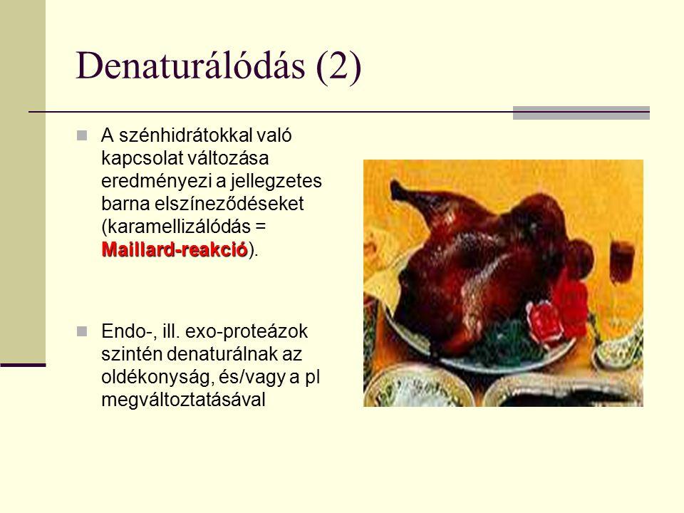 Denaturálódás (2) Maillard-reakció A szénhidrátokkal való kapcsolat változása eredményezi a jellegzetes barna elszíneződéseket (karamellizálódás = Mai