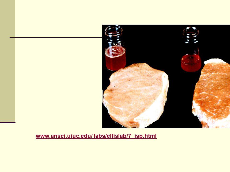www.ansci.uiuc.edu/ labs/ellislab/7_isp.html