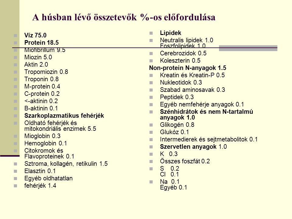 A húsban lévő összetevők %-os előfordulása Víz 75.0 Protein 18.5 Miofibrillum 9.5 Miozin 5.0 Aktin 2.0 Tropomiozin 0.8 Troponin 0.8 M-protein 0.4 C-pr