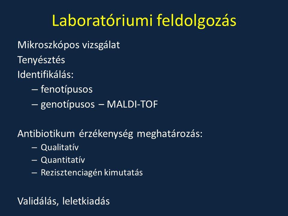Laboratóriumi feldolgozás Mikroszkópos vizsgálat Tenyésztés Identifikálás: – fenotípusos – genotípusos – MALDI-TOF Antibiotikum érzékenység meghatároz