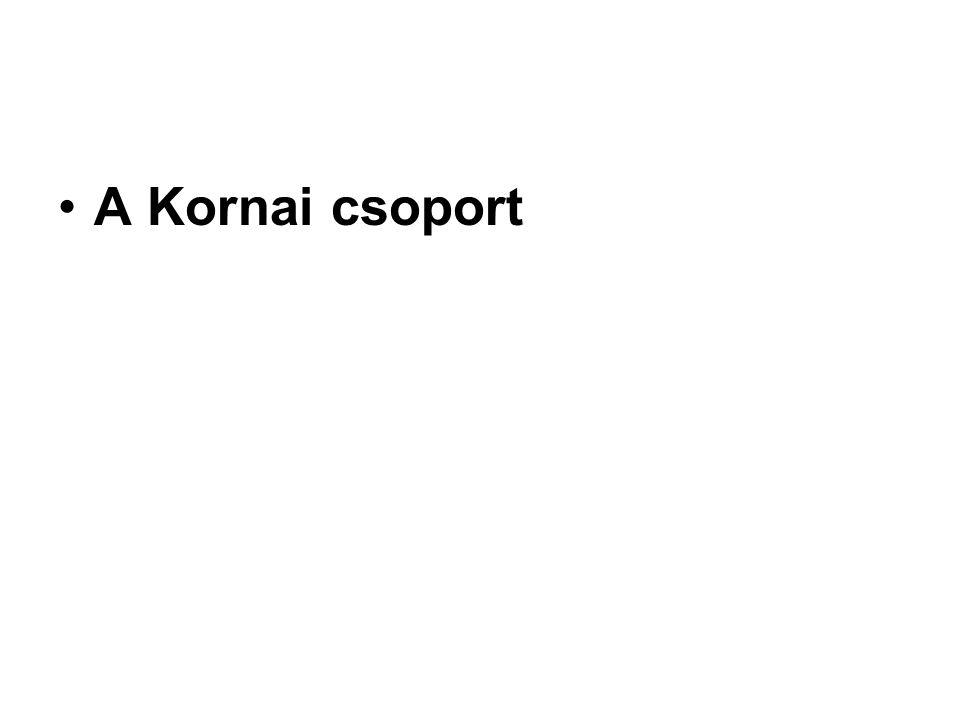 A Kornai csoport