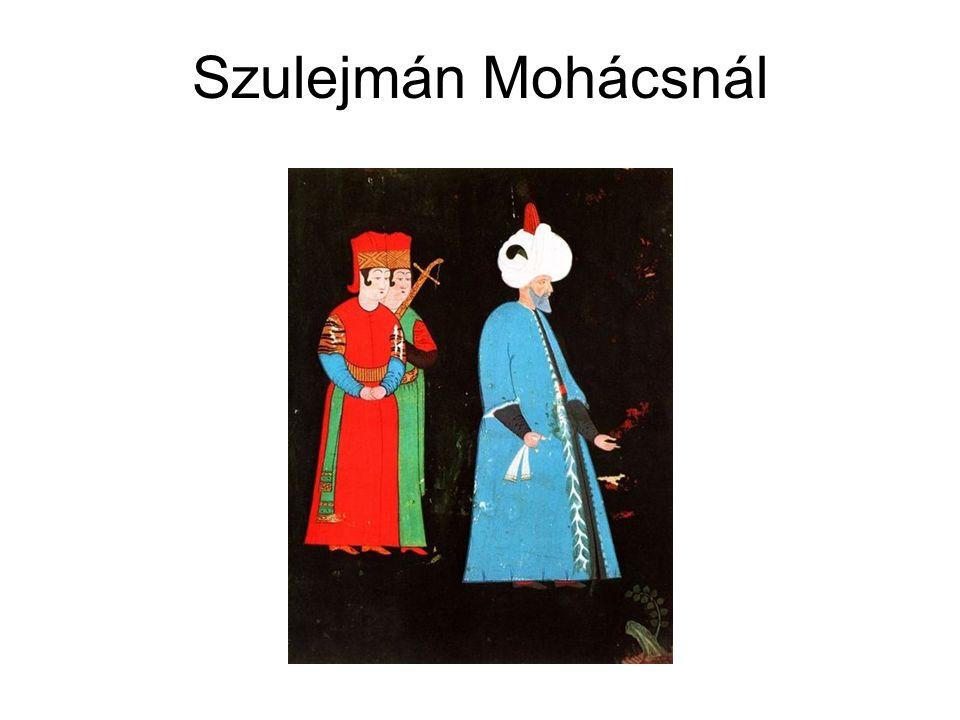 Szulejmán Mohácsnál