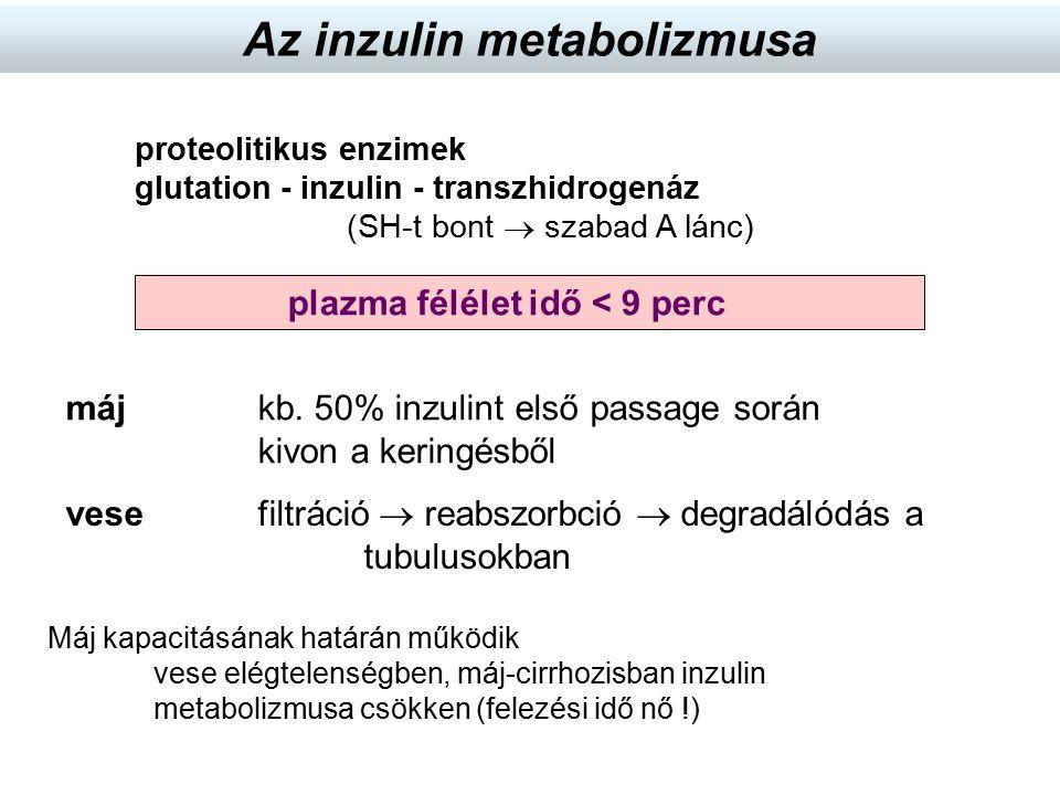 proteolitikus enzimek glutation - inzulin - transzhidrogenáz (SH-t bont  szabad A lánc) Máj kapacitásának határán működik vese elégtelenségben, máj-c