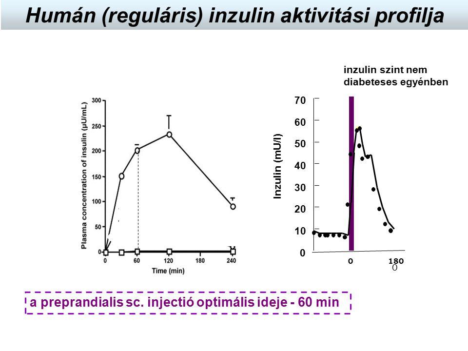a preprandialis sc. injectió optimális ideje - 60 min Inzulin (mU/l) 0 10 20 30 40 50 60 70 0 0180 inzulin szint nem diabeteses egyénben Humán (regulá