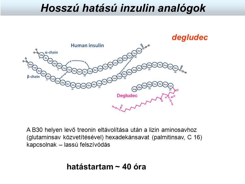 degludec hatástartam ~ 40 óra Hosszú hatású inzulin analógok A B30 helyen levő treonin eltávolítása után a lizin aminosavhoz (glutaminsav közvetítésév