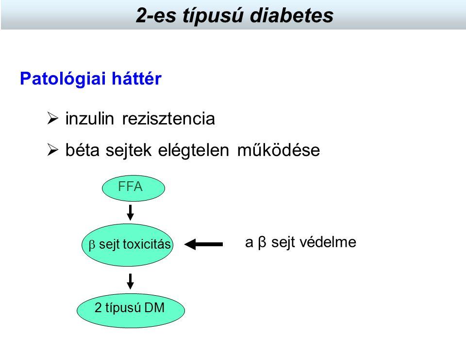 2 típusú DM  inzulin rezisztencia Patológiai háttér  béta sejtek elégtelen működése  sejt toxicitás FFA a β sejt védelme 2-es típusú diabetes